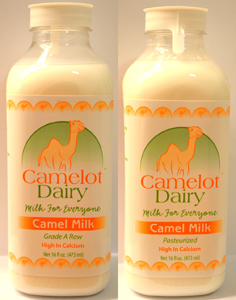Camelot Camel Milk buy now
